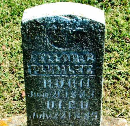 PLUMLEE, ELLAR  C. - Boone County, Arkansas | ELLAR  C. PLUMLEE - Arkansas Gravestone Photos