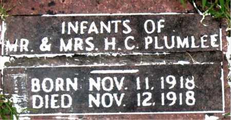 PLUMLEE, INFANTS - Boone County, Arkansas | INFANTS PLUMLEE - Arkansas Gravestone Photos