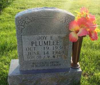 PLUMLEE, JOY E. - Boone County, Arkansas | JOY E. PLUMLEE - Arkansas Gravestone Photos