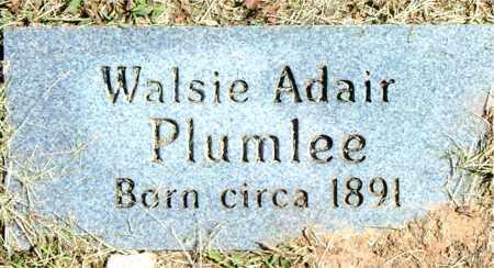 PLUMLEE, WALSIE - Boone County, Arkansas | WALSIE PLUMLEE - Arkansas Gravestone Photos