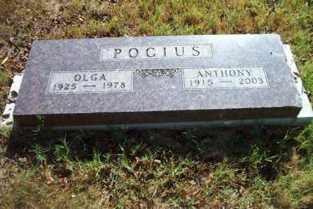 POGIUS, OLGA - Boone County, Arkansas | OLGA POGIUS - Arkansas Gravestone Photos