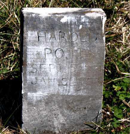 POTTS, HAROLD - Boone County, Arkansas | HAROLD POTTS - Arkansas Gravestone Photos