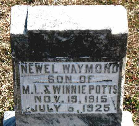 POTTS, NEWEL WAYMOND - Boone County, Arkansas | NEWEL WAYMOND POTTS - Arkansas Gravestone Photos