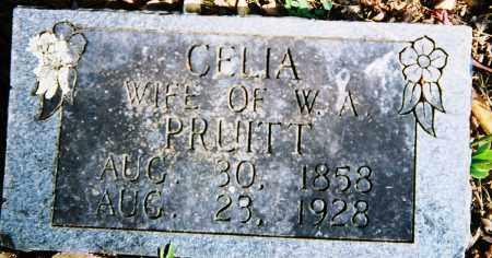 PRUITT, CELIA - Boone County, Arkansas | CELIA PRUITT - Arkansas Gravestone Photos