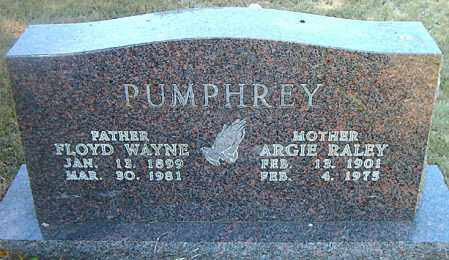 PUMPHREY, FLOYD WAYNE - Boone County, Arkansas | FLOYD WAYNE PUMPHREY - Arkansas Gravestone Photos