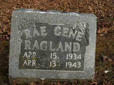 RAGLAND, RAE GENE - Boone County, Arkansas | RAE GENE RAGLAND - Arkansas Gravestone Photos