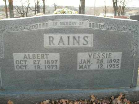 RAINS, ALBERT - Boone County, Arkansas | ALBERT RAINS - Arkansas Gravestone Photos