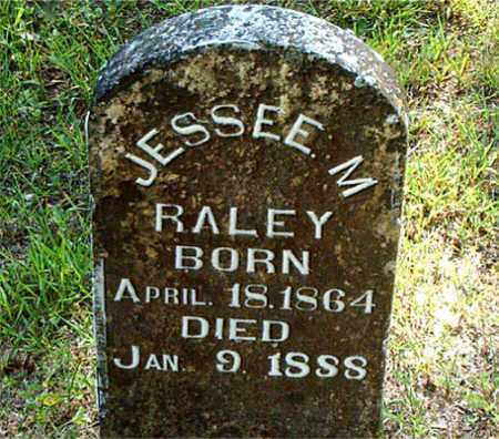 RALEY, JESSEE  M. - Boone County, Arkansas | JESSEE  M. RALEY - Arkansas Gravestone Photos
