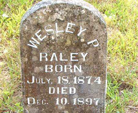 RALEY, WESLEY  P. - Boone County, Arkansas | WESLEY  P. RALEY - Arkansas Gravestone Photos