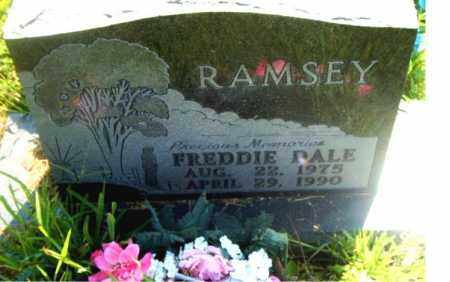 RAMSEY, FREDDIE  DALE - Boone County, Arkansas | FREDDIE  DALE RAMSEY - Arkansas Gravestone Photos