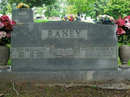 RANEY, SR, ALBERT HOMER - Boone County, Arkansas | ALBERT HOMER RANEY, SR - Arkansas Gravestone Photos