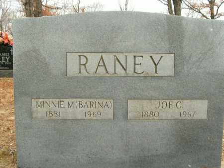 BARINA RANEY, MINNIE M. - Boone County, Arkansas | MINNIE M. BARINA RANEY - Arkansas Gravestone Photos