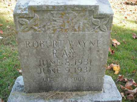 RAY, ROBERT WAYNE - Boone County, Arkansas | ROBERT WAYNE RAY - Arkansas Gravestone Photos