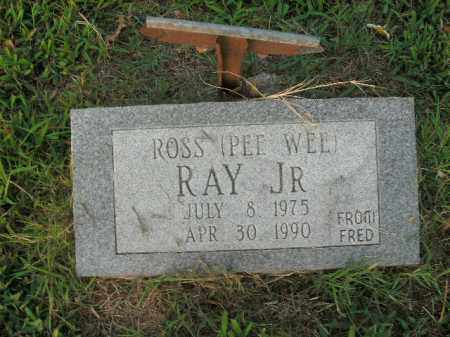 RAY, JR, ROSS - Boone County, Arkansas | ROSS RAY, JR - Arkansas Gravestone Photos