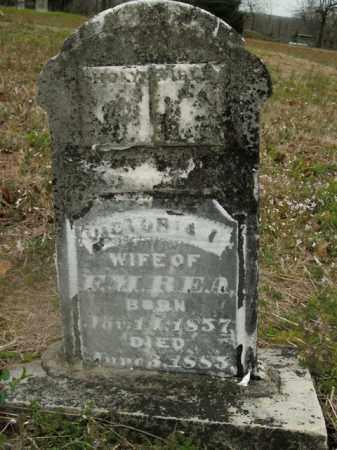 REA, VICTORIA - Boone County, Arkansas | VICTORIA REA - Arkansas Gravestone Photos
