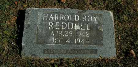REDDELL, HARROLD RAY - Boone County, Arkansas | HARROLD RAY REDDELL - Arkansas Gravestone Photos