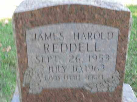 REDDELL, JAMES HAROLD - Boone County, Arkansas | JAMES HAROLD REDDELL - Arkansas Gravestone Photos