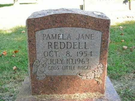 REDDELL, PAMELA JANE - Boone County, Arkansas | PAMELA JANE REDDELL - Arkansas Gravestone Photos