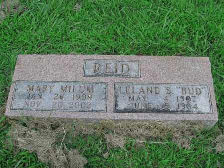 MILUM REID, MARY - Boone County, Arkansas | MARY MILUM REID - Arkansas Gravestone Photos