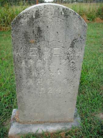 REISH, W.E. - Boone County, Arkansas | W.E. REISH - Arkansas Gravestone Photos