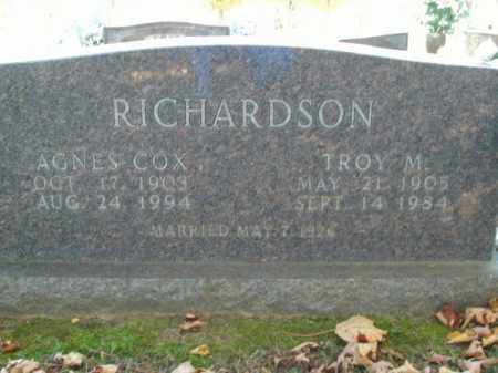 RICHARDSON, TROY M. - Boone County, Arkansas | TROY M. RICHARDSON - Arkansas Gravestone Photos
