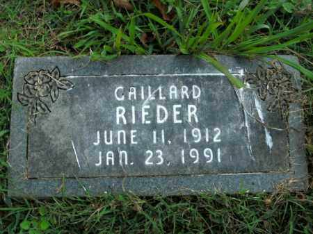 RIEDER, GAILLARD - Boone County, Arkansas | GAILLARD RIEDER - Arkansas Gravestone Photos