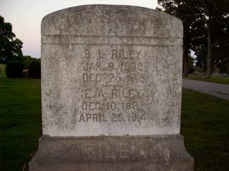 RILEY, ELIZABETH AGNES - Boone County, Arkansas | ELIZABETH AGNES RILEY - Arkansas Gravestone Photos