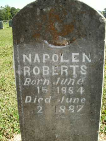 ROBERTS, NAPOLEN - Boone County, Arkansas | NAPOLEN ROBERTS - Arkansas Gravestone Photos