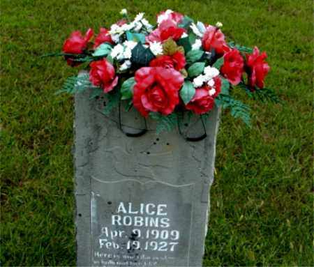 ROBINS, ALICE - Boone County, Arkansas | ALICE ROBINS - Arkansas Gravestone Photos