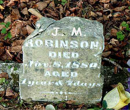 ROBINSON, J.  M. - Boone County, Arkansas | J.  M. ROBINSON - Arkansas Gravestone Photos