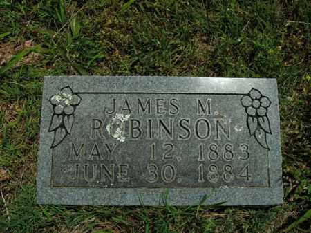 ROBINSON, JAMES M. - Boone County, Arkansas | JAMES M. ROBINSON - Arkansas Gravestone Photos