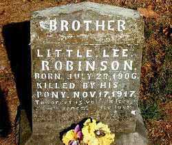 ROBINSON, LEE - Boone County, Arkansas | LEE ROBINSON - Arkansas Gravestone Photos