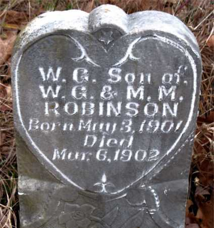 ROBINSON, W. G. - Boone County, Arkansas | W. G. ROBINSON - Arkansas Gravestone Photos