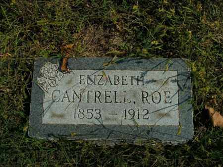 ROE, ELIZABETH - Boone County, Arkansas | ELIZABETH ROE - Arkansas Gravestone Photos