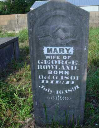 ROWLAND, MARY - Boone County, Arkansas | MARY ROWLAND - Arkansas Gravestone Photos