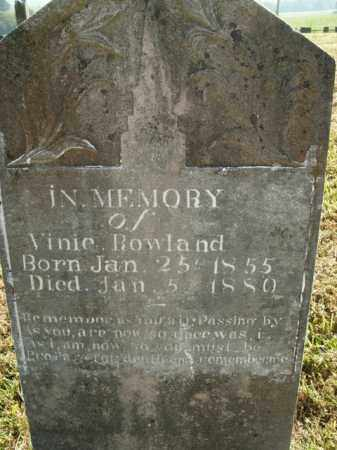 ROWLAND, VINIE - Boone County, Arkansas | VINIE ROWLAND - Arkansas Gravestone Photos