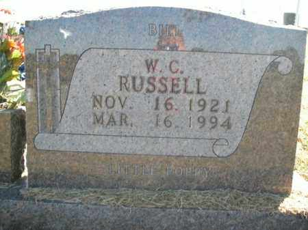 RUSSELL, W.C. - Boone County, Arkansas | W.C. RUSSELL - Arkansas Gravestone Photos