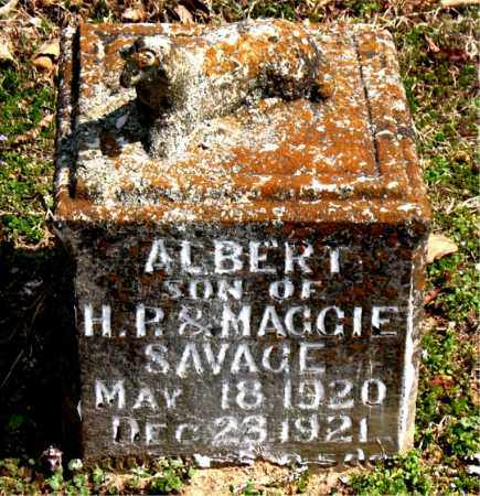 SAVAGE, ALBERT - Boone County, Arkansas | ALBERT SAVAGE - Arkansas Gravestone Photos