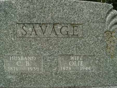 SAVAGE, OLIE - Boone County, Arkansas | OLIE SAVAGE - Arkansas Gravestone Photos