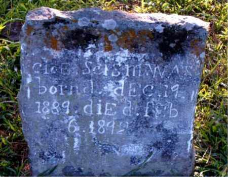 SCISM, CLOE - Boone County, Arkansas | CLOE SCISM - Arkansas Gravestone Photos
