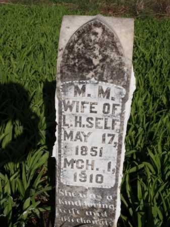 SELF, M.  M. - Boone County, Arkansas | M.  M. SELF - Arkansas Gravestone Photos