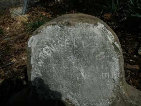 SELVIDGE, NEWTON - Boone County, Arkansas | NEWTON SELVIDGE - Arkansas Gravestone Photos