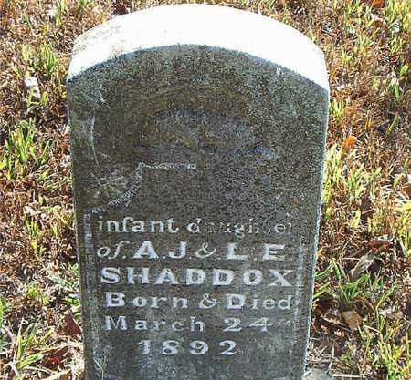 SHADDOX, INFANT DAUGHTER - Boone County, Arkansas | INFANT DAUGHTER SHADDOX - Arkansas Gravestone Photos
