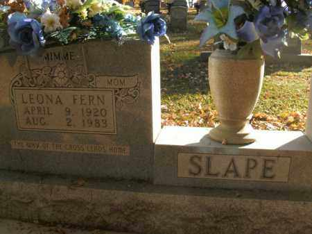 SLAPE, LEONA FERN - Boone County, Arkansas | LEONA FERN SLAPE - Arkansas Gravestone Photos