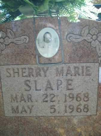 SLAPE, SHERRY MARIE - Boone County, Arkansas | SHERRY MARIE SLAPE - Arkansas Gravestone Photos