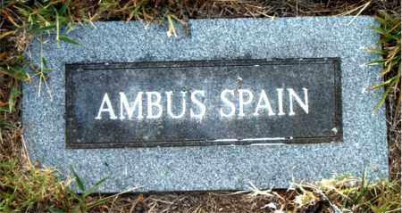 SPAIN, AMBUS - Boone County, Arkansas | AMBUS SPAIN - Arkansas Gravestone Photos
