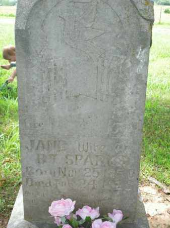 SPARKS, JANE - Boone County, Arkansas | JANE SPARKS - Arkansas Gravestone Photos