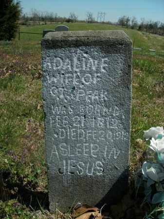 SPEAK, ADALINE - Boone County, Arkansas | ADALINE SPEAK - Arkansas Gravestone Photos
