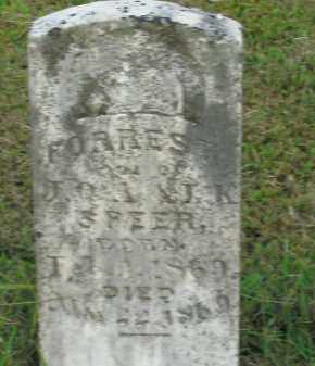 SPEER, FORREST - Boone County, Arkansas | FORREST SPEER - Arkansas Gravestone Photos