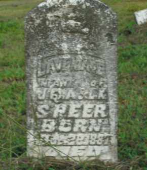 SPEER, LAVENIA - Boone County, Arkansas | LAVENIA SPEER - Arkansas Gravestone Photos